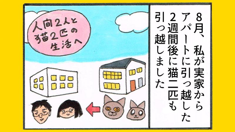 猫の引っ越し