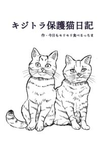 キジトラ保護猫日記1