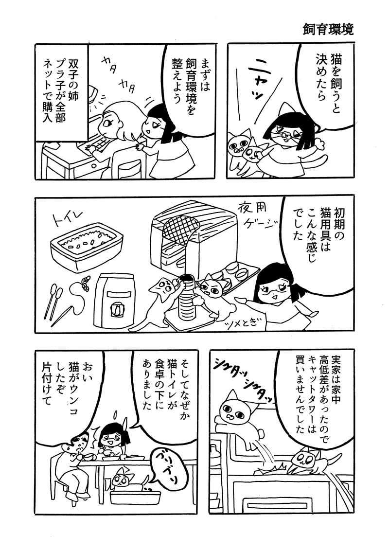 キジトラ保護猫日記5
