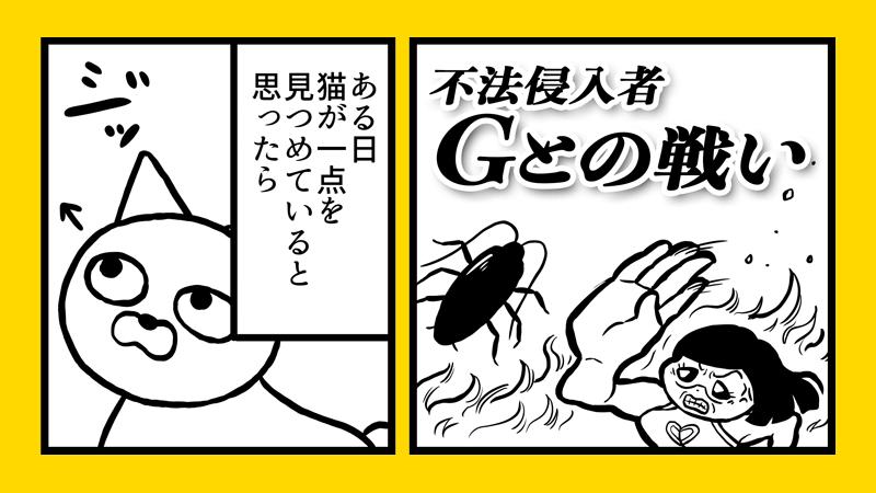 ゴキブリとの戦い